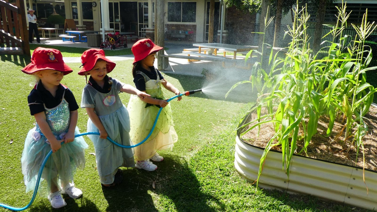 Curiosity Guides Learning at St Hilda's