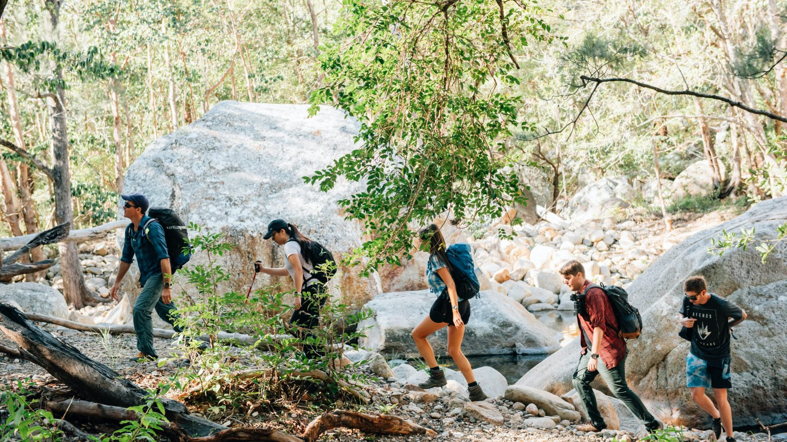 Hosted hikes in the Scenic Rim