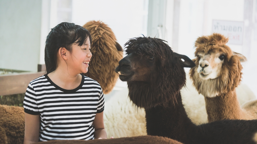 Animal encounters to have these school holidays